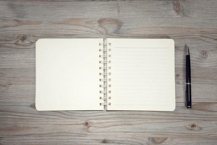 Bridget Jones Depression Diary