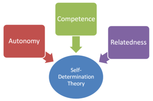 self determination theory and self esteem